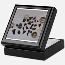 Fossilized Sharks Teeth And Shells Keepsake Box
