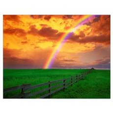 Rainbow In Country Field With Gold Clouds Poster