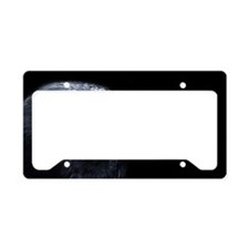 Crow Head License Plate Holder