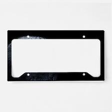 Crow Head License Plate Holder