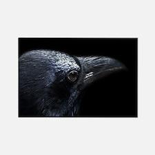 Crow Head Rectangle Magnet