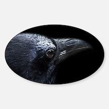 Crow Head Decal