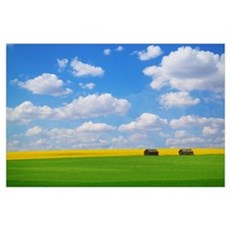 Two Farm Buildings In Vast Meadows Poster