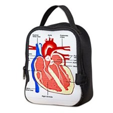 Cute Cardio Neoprene Lunch Bag