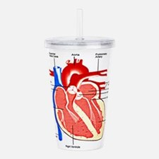 Cool Arrested Acrylic Double-wall Tumbler