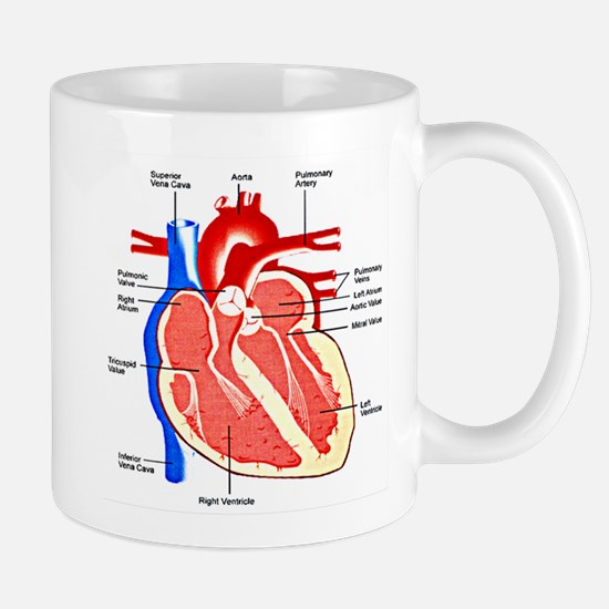 Heart Diagram Mugs