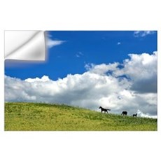 Horses Galloping On Hill Wall Decal