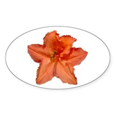 Orange Azalea Oval Decal