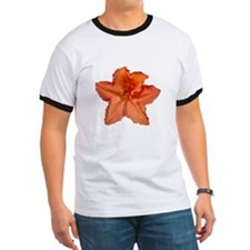 Orange Azalea T