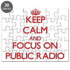 Unique Public radio Puzzle