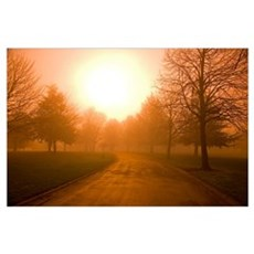 Sunrise Over Country Road, Oregon Poster