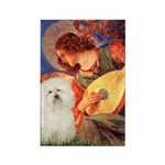Mandolin Angel & Bolognese Rectangle Magnet (10 pa