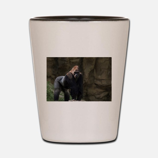 Cute Animals Shot Glass