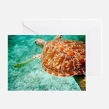 Sea Turtle Card Greeting Cards