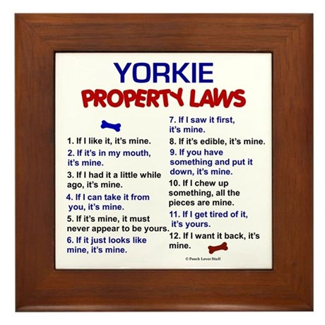 Yorkie Property Laws 3 Framed Tile