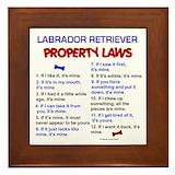 Labrador retriever property laws Framed Tiles