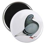 Blue PH Domestic Flight Magnet