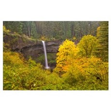 South Silver Falls In The Autumn In Silver Falls S Poster