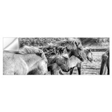 Black And White Image Of Icelandic Horses In The W Wall Decal