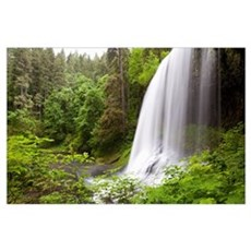 North Middle Falls In Silver Falls State Park; Ore Poster