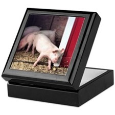 Little Pig Keepsake Box