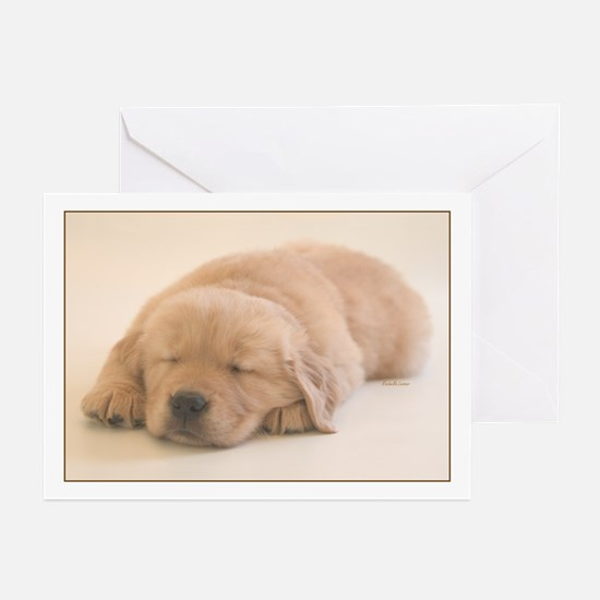"""Golden Retriever Slumber"" Greeting Cards"