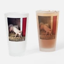 Little Pig Drinking Glass