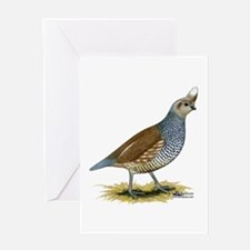 Texas Scaled Quail Greeting Cards