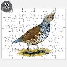 Texas Scaled Quail Puzzle