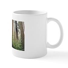 Redwoods Small Mug