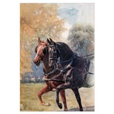 In Double Harness. Illustration From The Book Blac Framed Print