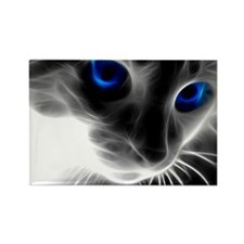 blue cats eyes Magnets