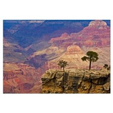 South Rim Of Grand Canyon, Arizona, Elevated View Framed Print