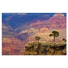 South Rim Of Grand Canyon, Arizona, Elevated View Poster