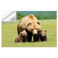 A Brown Grizzly Bear With Cubs; Alaska, United Sta Wall Decal
