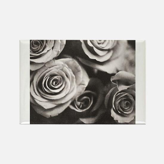 Medium format analog Hasselblad black and white ph