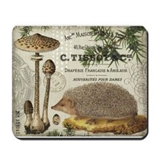 Best Hedgehog Food