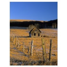 Old Farm, Near Cochrane, Alberta, Canada Framed Print