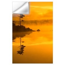 Lone Pine And Misty Lake At Dawn, Rocky Lake, Lake Wall Decal