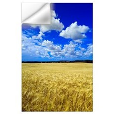 Maturing Barley Crop And Sky With Cumulus Clouds, Wall Decal