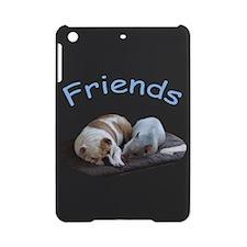 Friends Just Know iPad Mini Case