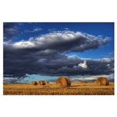 Hay Bales Under Cumulus Clouds In Autumn, Rural Al Poster
