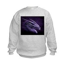 Funny Dragons Sweatshirt