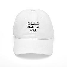 Maltese dad looks like Baseball Cap