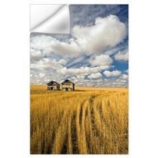 Field Showing Remains Of Wheat Straw After Summer Wall Decal