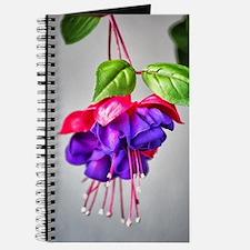 Fuchsia Blossom Journal