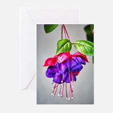 Fuchsia Blossom Greeting Cards (Pk of 10)