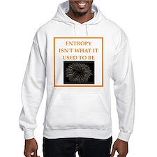 entropy Hoodie