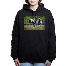 Cute Horse painting Women's Hooded Sweatshirt