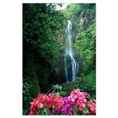 Hawaii, Maui, Wailua Waterfall And Rainforest Poster